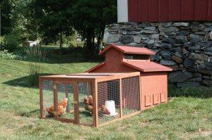 Chick-N-Barn