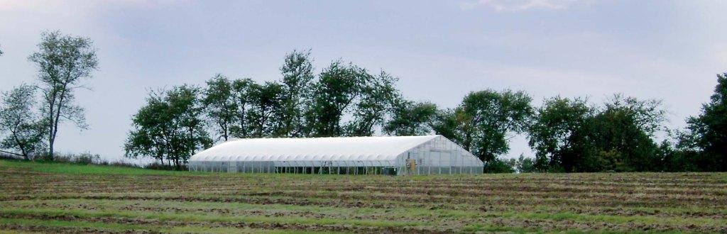 Solar Star Gothic Greenhouse