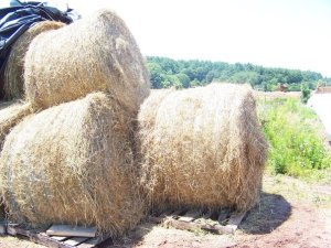 A pile of round bales