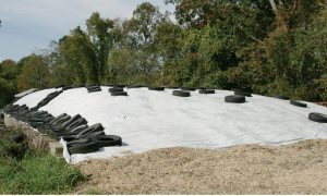 Black/ White Silage Film