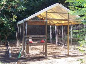 10' by 20' canopy chicken coop