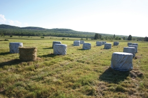 Round hay bale covers