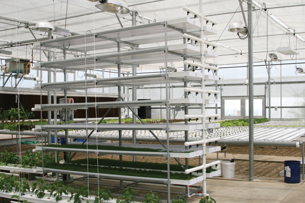 Fodder system with HPS lighting