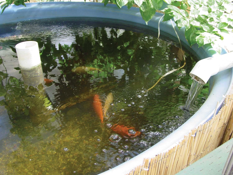 Special invitation farmtek s cea school in dyersville ia for Fish farm 3
