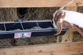 Double-Tuf™ Feed Trough