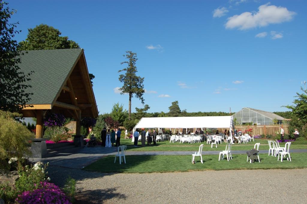 Wedding Canopy 1