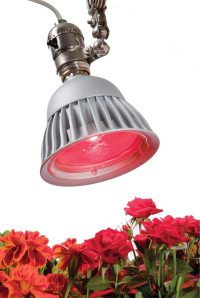 LumiBulb LED Growth Bulbs