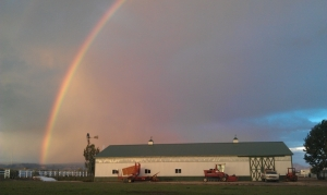 Rainbow over a Farm