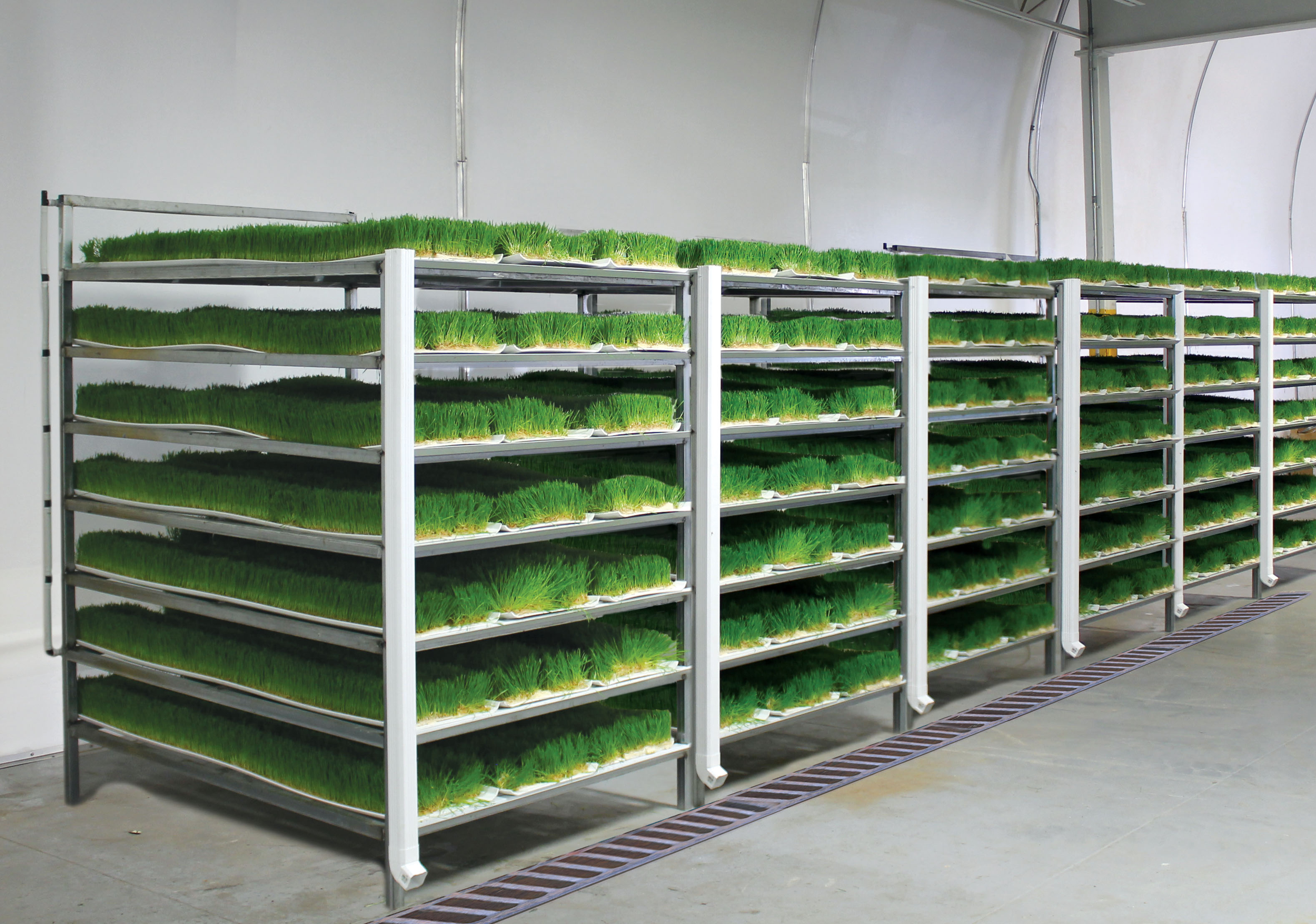 Farmtek introduces commercial fodder systems and turnkey for Decor systems