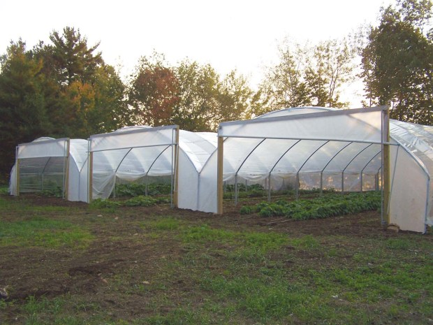Longer Growing Potential in High Tunnels