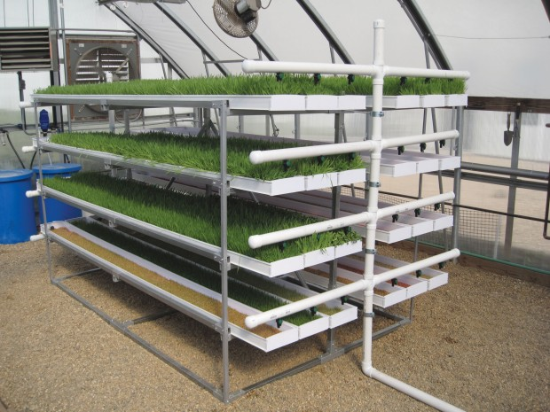 FodderPro Feed Systems