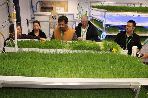 Fodder Growing Room Hands-on