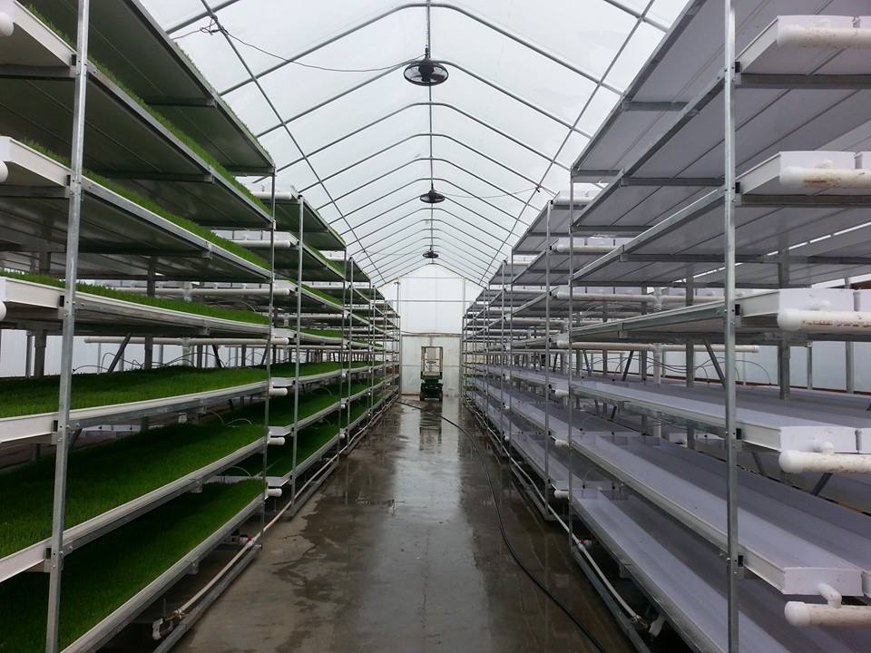 Fodder production facility