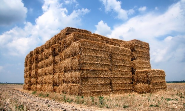 Hay bales stacked