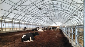 ClearSpan livestock housing