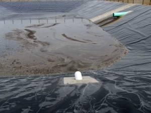 Liquid manure lagoon