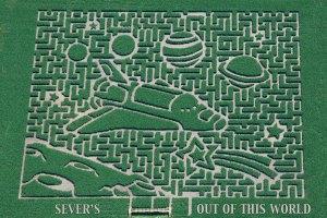 Complex corn maze