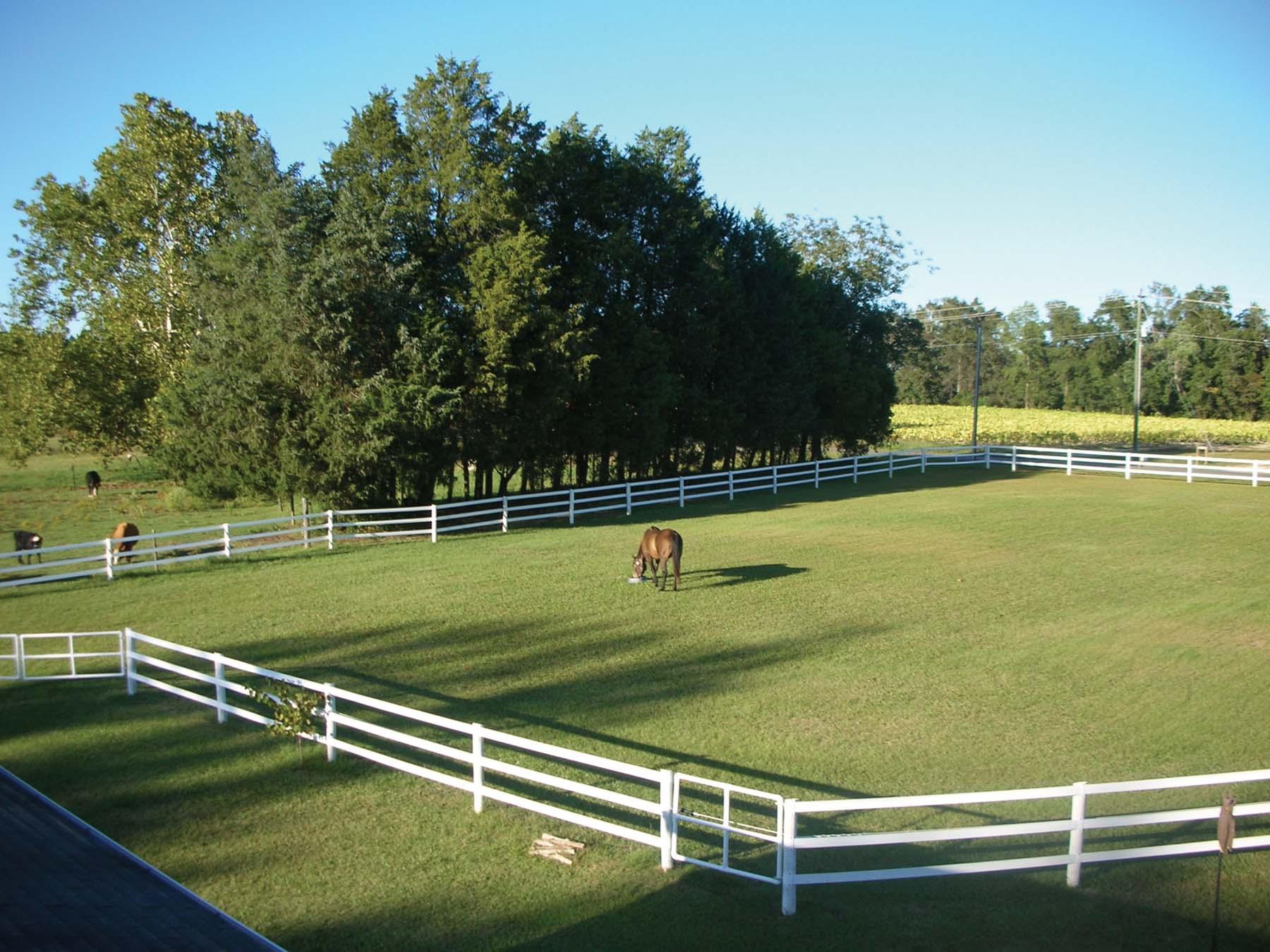 Fencing Livestock 101 | FarmTek Blog