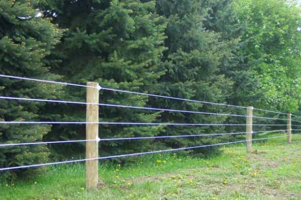 High-Tinsel Wire Fencing