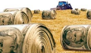 Farm Money Making