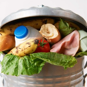 food-in-a-trash-can