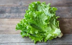 kzLM8LzzRehYGdIfgk4S_lettuce_live_earth-11%20copy